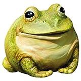 Medium Portly Frog