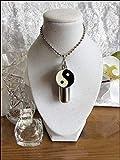 Support à huile d'onction avec flacon intérieur, charme yin-yang attaché et pipette libre pour le remplissage. Huiles essentielles pour la santé, le bien-être et la spiritualité (Argent, Collier)