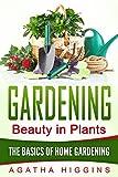 Gardening: The Basics of Home Gardening