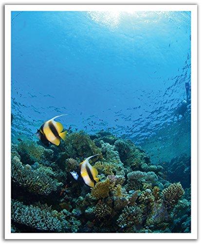 JP London ustrip schälen und Stick Abnehmbare Wandtattoo Aufkleber Wandbild, Zimmerdekorations-Ocean Aquarium Tropic, ca. von - Ocean Fish Tank