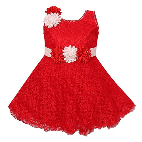 Wish Karo Baby Girl's Net Frock Dress (Red, 0-3 Months)