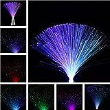 HITSAN INCORPORATION Multicolor Romantic LED Fiber Optic Flashing Night Light for Home Decor