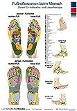 Fußreflexzonen beim Menschen - Zonen für manuelle- und Lasertherapie: Fussreflexzonen beim Menschen - Zonen für manuelle- und Lasertherapie Poster mit ... zum aufhängen in der Praxis  - Podologie -