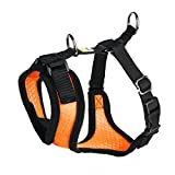 Hunter Hundegeschirr Maui Vario Rapid, S, orange, 27 x 38-47 cm