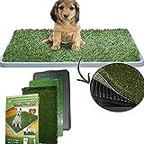 DOBO® Lettiera MAXI wc per cani e gatti cuccioli di media taglia con erba sintetica assorbente ottima per addestramento Potty Patch
