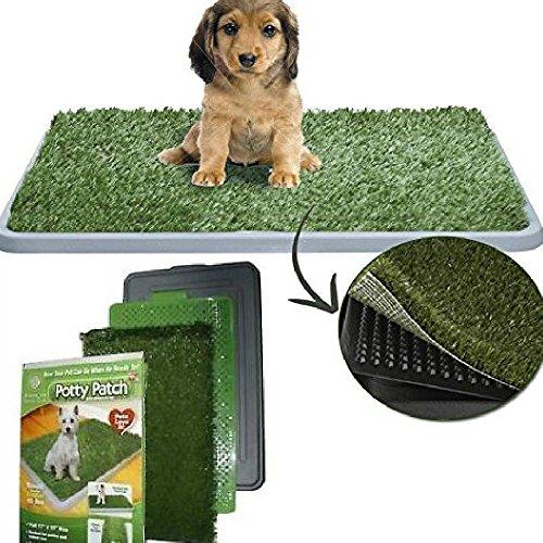 Gras Patch Von Welpe (Dobo® Katzentoilette Maxi WC für Hunde und Katzen Welpen von mittlerer Größe mit Kunstrasen saugfähig ideal für Training Potty Patch)