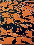 Spill: Daniel Beltra by Barbara Bloemink (2013-12-01)