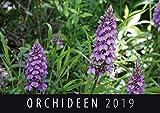 Orchideen 2019: Wandkalender
