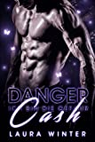 Danger Cash - Ich bin die Gefahr: Liebesroman (Cash Brothers 4)