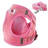 FREESOO Katzengeschirr Geschirre Brustgeschirr Hund Laufgeschirre mit Leine atmungsaktiv Weiches Netzgewebe Pink
