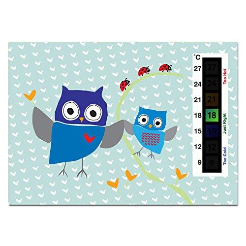 Baby Blue Owl &...