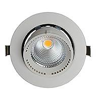 Xh&Yh Lampe LED Cob Elephant Nose Intégré Plafonnier Business Lighting 15W Trunk Lights Blanc chaud (3000k) 130 * 115mm