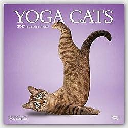 Yoga Cats - Joga-Katzen 2017 - 18-Monatskalender: Original BrownTrout-Kalender [Mehrsprachig] [Kalender] (Wall-Kalender)