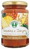 Probios Composta di Ananas e Zenzero - 1 Pezzo