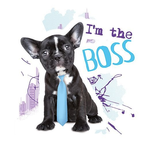 PAPSTAR 180 Servietten, 3-Lagig Design Edition 1/4-Falz 33 cm x 33 cm I'm The Boss 86897 Design-Servietten Deko-Servietten