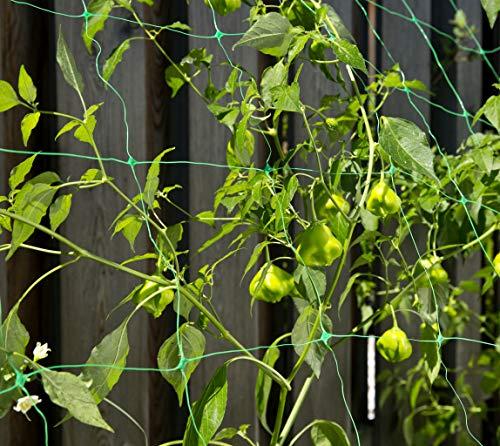 Windhager Ranknetz Pflanzennetz - 3