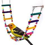 Multicolor Pájaros juguete, columpio y escalera para loros kanarien jaula campanas juguete