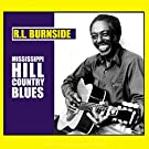Mississippi Hill Country Blues [VINYL]