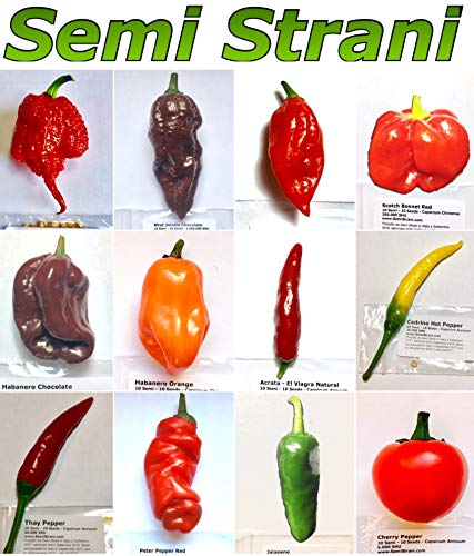 120 SAMEN IN 12 SORTEN DER BESTEN CHILI IN DER WELT, KOLLEKTION 2: CAROLINA REAPER, etc