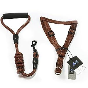 adahome réfléchissant Laisse pour chien avec poignée canne de protection en nylon Pet Harnais réglable, harnais et laisse de dressage pour chien de 001