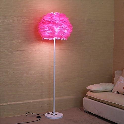 FIOFE- Simple et élégant salon confortable chambre oiseau nid beau plume lampe sur le sol lampe sur pied de chevet (Couleur : Rose)