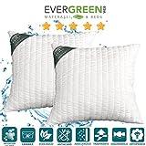 Evergreenweb Kissen für Haus oder Garten LAVABILI in Waschmaschine Super Soft, 2 Wangenpolster mit Dauneneffekt, moderne x Bett, Sofa oder Liegestuhl 60x60 cm