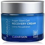 Andalou Beta Hydroxy Complex Recovery Cream 50 ml
