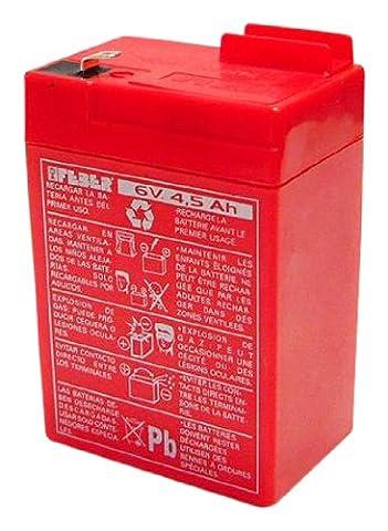 Feber - 800003104 - Vélo et Véhicule pour Enfant- Batterie 6 V - 4,5 Ah