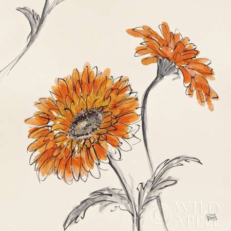 Orange Gerbera II par Paschke, CHRIS – Fine Art Print Disponible sur