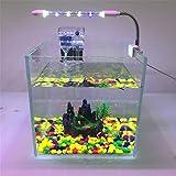 LHY LIGHT Acquario Luce LED Clip per Luminoso per acquari a LED Lampada da Acquario Piccola per Mini Staffa di Illuminazione per Serbatoi,30cm/12in