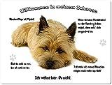 Merchandise for Fans Blechschild/Warnschild / Türschild - Aluminium - 15x20cm - - Willkommen in Meinem Zuhause - Motiv: Cairn Terrier Porträt - 03