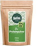 Vegan Protein Polvere Bio - 900g