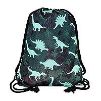 "HECKBO® boys children gym bag - dinosaur dino design - washing machine safe - 12.6"" x 15.8"" - kindergarten, nursery, travel, sports, school, soccer - backpack, bag, game bag, gym bag"