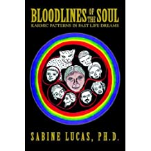 Bloodlines of the Soul: Karmic Patterns in Past Life Dreams by Sabine Lucas (2005-04-05)