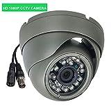1080P AHD CCTV Dome Kamera 2MP 4 IN 1 AHD Kamera 3000TVL Wasserdichte Außenkugel-Kamera für AHD DVR, 3.6mm Objektiv, 24pcs LEDs mit 65ft IR Nachtsicht, UTC unterstützend, mit IR-Cut, BNC Kabel