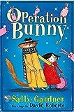 The Fairy Detective Agency: Operation Bunny
