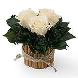 Rosen konserviert