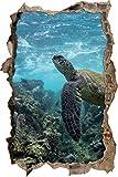 Pixxprint 3D_WD_2556_92x62 Schildkröte im Pazifik Wanddurchbruch 3D Wandtattoo, Vinyl, bunt, 92 x 62 x 0,02 cm
