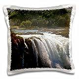 Danita Delimont - Kymri Wilt - Waterfalls - Africa, Zimbabwe. Victoria Falls, The Smoke that Thunders. - 16x16 inch Pillow Case (pc_188733_1)