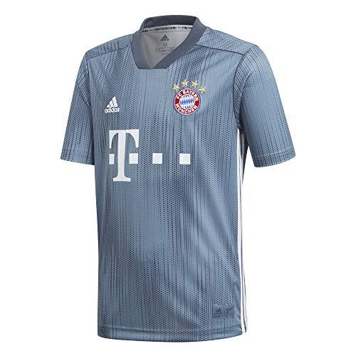 adidas Kinder 18/19 FC Bayern 3rd Trikot, raw Steel/Utility Blue/White, 164 -