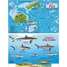 Fiji Map & Guide to Beqa Sharks Franko Maps Laminated Fish Card