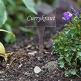 Acrylglas Pflanzschilder Slave farblos - Gartenstecker, Kräuterschilder, Pflanzenstecker - Auswahl + Wunschname, Pflanzenname:Currykraut