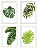 PICSonPAPER Poster 4er-Set BLÄTTER, gerahmt DIN A4, Dekoration für Wohn- und Arbeitsräume, Monstera, Palmen, Kunstdruck, Wandbild, Poster mit Rahmen, Geschenk (Mit IKEA Fiskbo Weiss)
