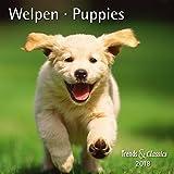 Welpen Puppies 2018 - Broschürenkalender - Wandkalender - mit herausnehmbarem Poster - Format 30 x 30 cm