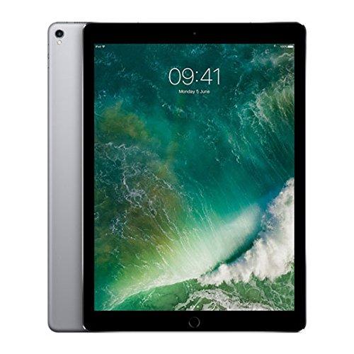 Price comparison product image Apple 12.9-inch iPad Pro Wi-Fi 256GB - Space Grey