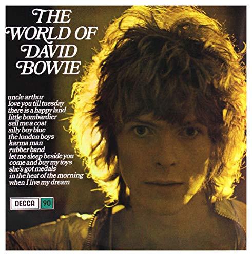 The World of David Bowie (RSD 2019, Ltd Heavyweight Blue Vinyl) [Vinyl LP]