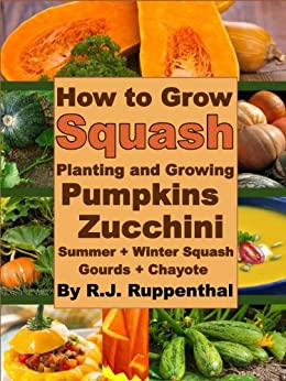 how to grow squash planting and growing pumpkins zucchini summer and winter squash gourds. Black Bedroom Furniture Sets. Home Design Ideas