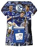 FC Schalke 04 2016