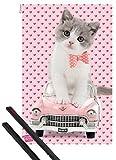 1art1® Póster + Soporte: Gatos Póster (91x61 cm) Lindo Gatito Sobre Caddy, Retro Y 1 Lote De 2 Varillas Negras