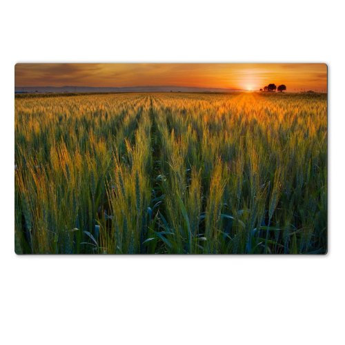 valleys-golden-california-harvest-scenery-table-mats-customized-made-to-order-support-ready-28-6-16-